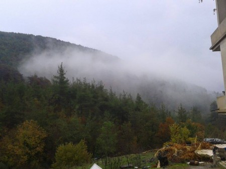 Photo of Latakia forestry taken by the Libyan Shari'a official for the ISIS-front group Katiba al-Muhajireen