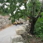 Village Pic 3