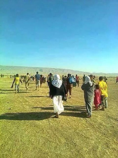 Yazidis flee the IS invasion on foot, through Sinjar's desert mountains. Photo was tweeted by Sinjar locals today.