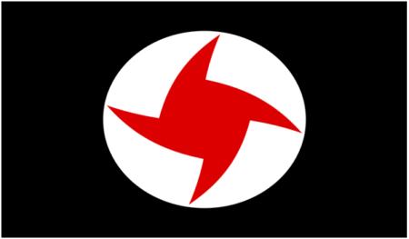 ssnp flag